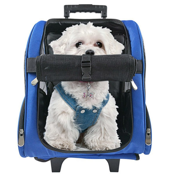 Dog Luggage Carrier on Wheels for Airplane Travel